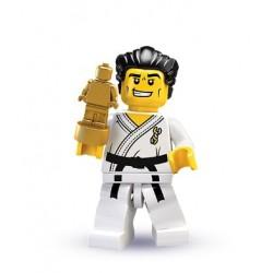 un maître de karaté