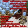 United Bricks - Homme Gelé Minifigure