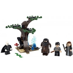 4865 - La forêt interdite