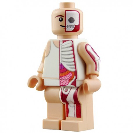 Lego Minifig CUSTOM BRICKS Minifig Jason Freeny Knicker Anatomy (La Petite Brique)