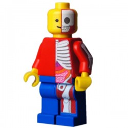 Lego Minifig CUSTOM BRICKS Minifig Jason Freeny Classic Anatomy (La Petite Brique)