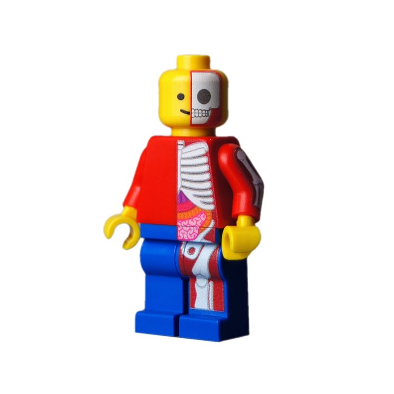 Lego Custom Bricks Custom Minifig Jason Freeny Classic Anatomy La